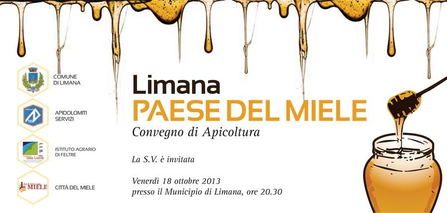 Convegno Apicoltura Limana 2013