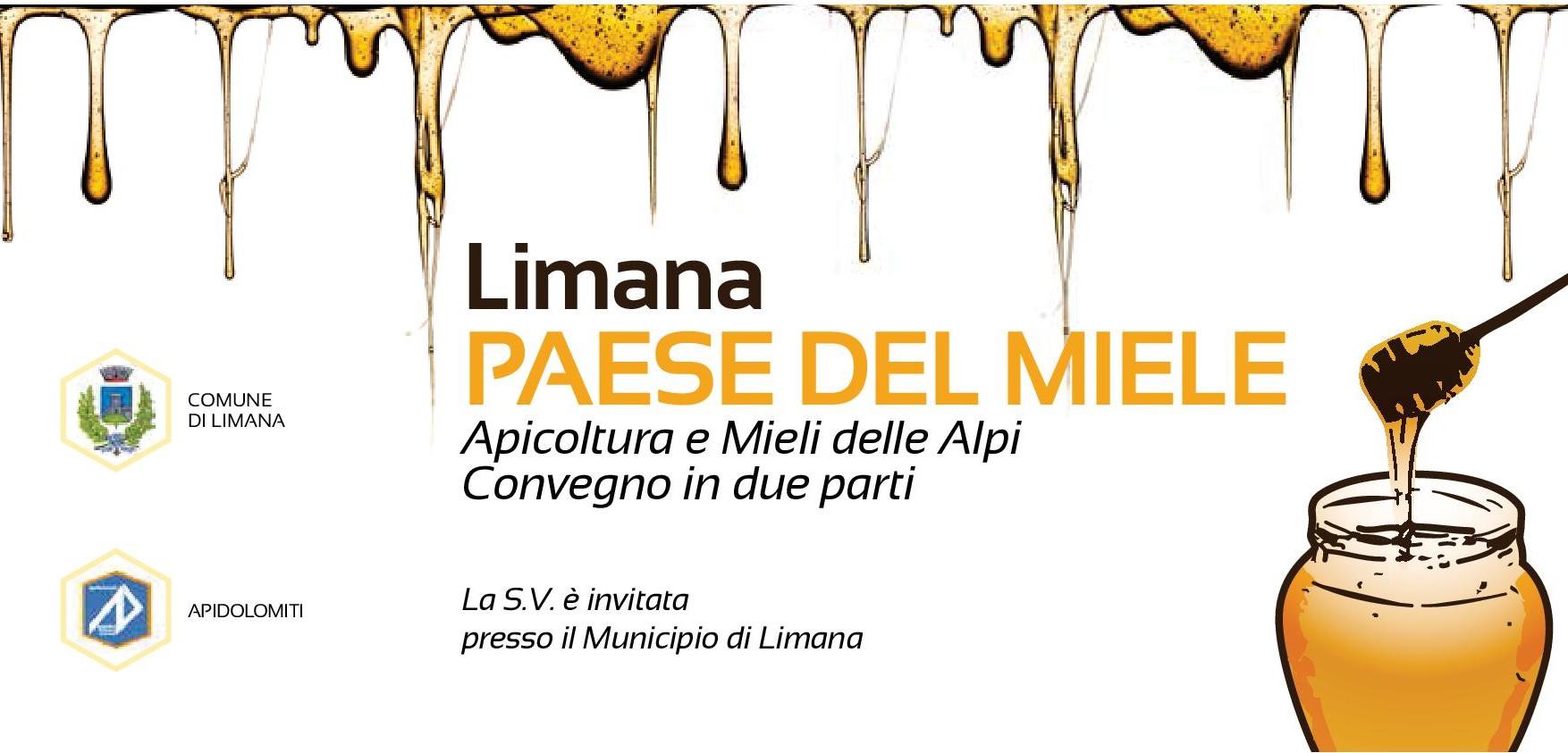 Invito-Convegno-LPDMiele2017-pag1