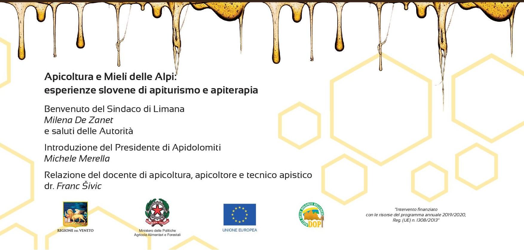 Convegno Apicoltura delle Alpi - Limana 2019